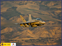 Premios Fotografía 2009 accésit colección: Luisito (Ejército del Aire Ministerio de Defensa España) Tags: