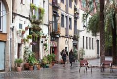 Rainy greeny Barcelona (Siouz) Tags: barcelona city rain spain south streetscene catalonia greenwall catalogne elborn vegetalwall planwall
