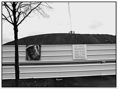 Tribute to Madiba IV (intasko) Tags: life street trip portrait urban bw black nelson vision tribute hommage share ville mandela antiracism roubaix btp madiba partage norddefrance