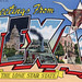 Greetings from Texas, The Lone Star State - Large Letter Postcard