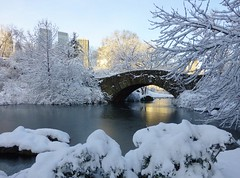 Central Park (KaDeWeGirl) Tags: park newyorkcity bridge winter lake snow ice frozen manhattan central gapstow