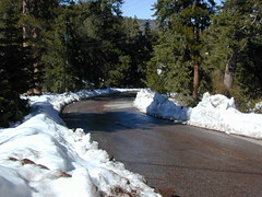 Finding Snow (totalescape.com) Tags: california ca winter snow cold pine deep peak mount snowing pinos elevation forests sawmill pinemountain lospadresnationalforest pinemountainclub