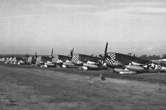 P-47 Thunderbolts with the distinctive markings of the 78th FG. with the distinctive markings of the 78th FG.