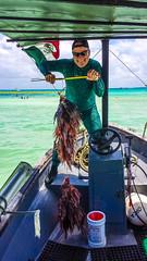 14_4_13 Lion Fish -27 (Keith&Denise) Tags: dive scuba lionfish scubadive spearfish playdelcarmen