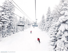 Skiing at Le Massif ski resort in Charlevoix, Quebec, Canada (Vincent Demers - vincentphoto.com) Tags: voyage trip travel trees winter white snow canada ski tree nature forest landscape snowboarding outdoors skiing quebec hiver evergreen skiresort neige wilderness paysage wintersport arbre blanc skier forêt charlevoix sapin lemassif skislope pleinair travelphotography winteractivity jeuxdhiver conifère cellphonephotography sportdhiver traveldestination mobilephotography phoneography photographiedevoyage pistedeski photodevoyage centredeski iphoneography travellocation destinationvoyage lemassifskiresort