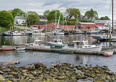 Vessels of Varying Sizes (Switzer-Land Studios) Tags: ocean light sky colors birds 35mm boat natural camden maine sail nikkor f18 dingy downeast d7100