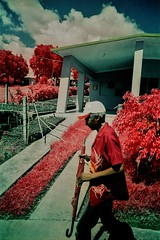 (bill bold II) Tags: film 35mm cuba trinidad infrared homedeveloped kodakeir olympusom2n colourinfrared tetenalc41