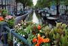 Bloemgracht (bingley0522) Tags: amsterdam canal bloemgracht olympusmzuiko17mmf28 olympusep5