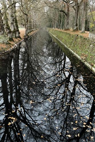 Moat Around Château de Chenonceau | France