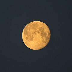 Lune (SylvainMestre) Tags: lune moon matin morning