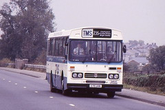 TRIMDON MOTOR SERVICES C75UHN IS SEEN AT HIGH SHINCLIFFE ON 27 OCTOBER 1985 (47413PART2) Tags: c75uhn tms leyland tiger bus