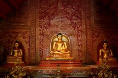 Wat Phra Singh (_JLC_) Tags: tailandia asia sudesteasiático chiangmai arquitectura architecture interior buddhism budismo buda buddha escultura sculpture watphrasingh templo temple wat canon canon6d eos 6d 2470f4