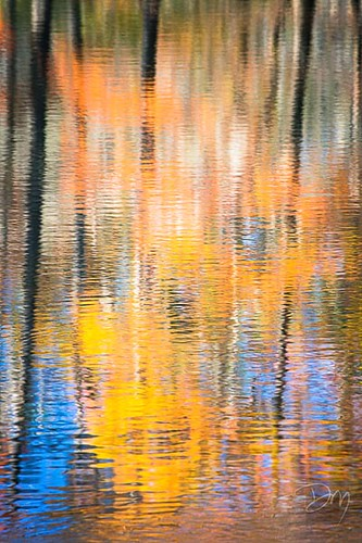 Abstract_Reflection_4.jpg