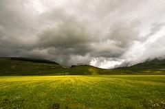 IL PAESE (Lace1952) Tags: sigma giallo cielo campo collina vallata piana nubi lenticchie castellucciodinorcia 1020f4 nikond7100