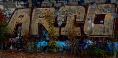 old (B20BP8R) Tags: urban art colors graffiti nikon paint random explorer northcarolina dirty fresh greensboro highpoint crime illegal spraypaint bebop grime deadbird urbex abandonedplaces wrongsideofthetracks ifthesewallscouldtalk guilfordcounty urbanexplorer fukart d5100 revolutionmills freightlove kickitdownrange