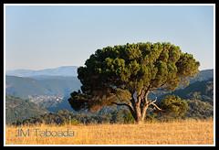 Galcia 2012 (J.M. Taboada) Tags: espaa canon eos spain galicia galiza taboada canoneos norte 40d eos40d canoneos40d jmtaboada