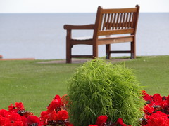 St.Andrews1 (Fran PS) Tags: flowers sea colour bench relax landscape scotland peace unitedkingdom scottish escocia rest reinounido stancrews