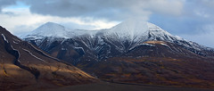 The Call of the North - Svalbard....(Explored, my 145th) (Pewald) Tags: bestcapturesaoi
