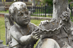 Weathered Cherub (Eric Hunt.) Tags: art cemetery wing cherub weathered crown lichen marble statuary
