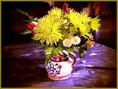 and #3...wb43_7365 (Aureusbay) Tags: yellow pen daylight tripod indoors bouquet tabletop mft olypen epl1 mzuiko1442mm