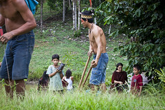 _20111123_BARBARA VEIGA_AMAZONIA_ACRE_ALDEIA APIUXA_ASHANINKA TRIBE_REFLORESTAMENTO_4502 (naturerights) Tags: projects acre amazonia ashaninka benki apiwtxa bresil2011 wwwbarbaraveigacom yorenka antame