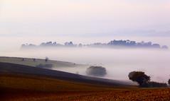Foschie mattutine (raffaphoto) Tags: italy fog landscapes alba campagna nebbia conero marche paesaggio mattino foschia