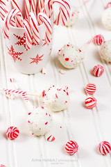 Peppermint chocolate cake pops (Arina Habich) Tags: christmas red food white holiday cane circle dessert cookie candy flat sweet chocolate small mint gourmet starbucks round sweets icing stick candycane candies sugary striped indulgence confection peppermintcandy winterholiday onstick pastrie sweetfood sweetstick cookiepops cakepop bakedtreat peppermintcane