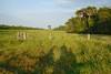 los llanos (Cartonero Promedio) Tags: colombia meta villavicencio américadelsur