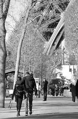 well it is paris... (Hedr-on Collider) Tags: blackandwhite holiday paris france cute love nikon couple walk eiffeltower romantic