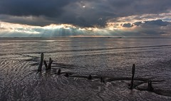Humber Still Life (SydPix) Tags: wood light shadow sky sunlight water rotting silhouette backlight clouds reflections river coast mud timber decay jetty tide ruin estuary ripples rays hull derelict humber foreshore victoriadock alexandradock sydyoung