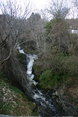 IMG_0346