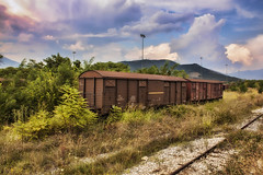 Abandoned train wagons