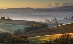 (Massimo Feliziani) Tags: mist fog alberi rural sunrise landscape nikon view zoom alba foggy vista nebbia paesaggio colline macerata prospettiva foschia campi sibillini terreni rurale coltivati coltivazioni aratura