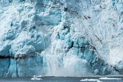 _MG_4503a (markbyzewski) Tags: alaska ugly calving margerieglacier glacierbaynationalpark