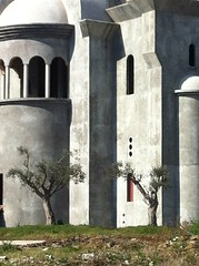 Olive trees in front of an unfinished church
