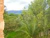 IMGP1039 (Scotty Nic) Tags: lucy hacienda otavalo cusin