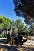 DSC_0613 copie (kadyjef) Tags: aude minervois pepieux dolmendesfades