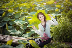 Thuy Van (duyblog.com • nguyenanhduy.com) Tags: lotus sen đầmsen yếm trongdamgidepbangsen