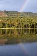 Reflections on a Lake (Kaptens) Tags: lake nature water landscape forrest natur skog vatten dalarna solnedgång landskap sjö dalecarlia speglingar åsen canonef7020040lisusm