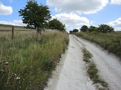DSCN2392 (Mace Cockburn) Tags: road chalk