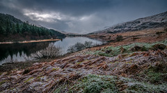 Frozen (Einir Wyn Leigh) Tags: landscape lake wales cymru gold nature natur natural frost frozen wilderness rugged february winter summer autumn spring clouds moody sunlight reflection trees mountains outdoor color colours orange blue yello sun storm