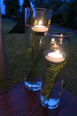 table decor (BarryFackler) Tags: candles glass flames burning water fern fronds light glow table glassware decor decoration reflections tabledecor floating glowing vases amandajameswedding wedding matrimony marriage nuptuals ceremony outdoor hawaii kaloko kona event reception weddingreception painaplace ohiananiplace barronfackler barryfackler hawaiianislands sandwichislands northkona island hawaiicounty hawaiiisland polynesia 022517 2017 westhawaii bigisland amanaalmeida jameshickey occasion specialoccasion