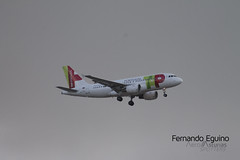 Tap Portugal Madrid Barajas (Fernando Eguino) Tags: madrid barajas avión t4 iberia spotter plane