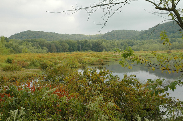 North Fork Waterfowl Resting Area - September 2005