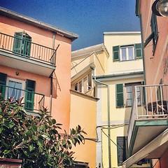 Manarola (hellogeri) Tags: italy italia terre monterosso manarola cinque riomaggiore 2013