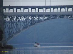 Britannia Boat Ride (alexinatempa) Tags: bridge wales boat anglesey northwales menaistraits britanniabridge