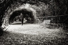 Swagger (aleksandra_p) Tags: bw candid streetphotography adelaide botanicgardens