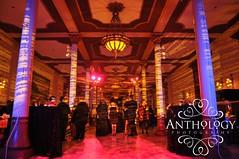 Anthology Photography