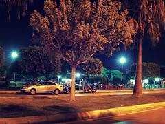 City Lights (mesutkayaphotograpy) Tags: park street city trees light tree beautiful car night garden nice shots