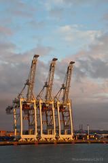 Ship to shore (StS) container crane (Rhannel Alaba) Tags: france nikon ship crane container le havre shore sts d90 gonfreville pido alaba rhannel